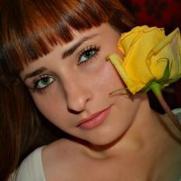 роза :: Ольга Елисеева