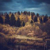 Осенний пейзаж. :: Лариса Сафонова