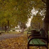 парк :: Анастасия Позднякова