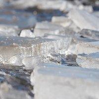 Таяние льда :: Диана С