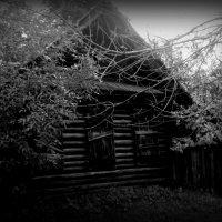 проклятый старый дом :: лена григорьева