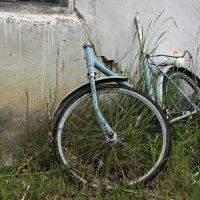 Старый велосипед :: Павел Чуков