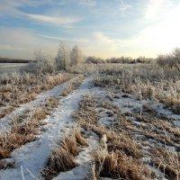 Вдоль холодной реки. :: nadyasilyuk Вознюк