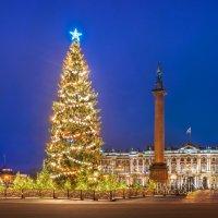 Ель на Дворцовой площади :: Юлия Батурина