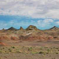 Пустыня Гоби, Нэмэгэтинская впадина :: Галина
