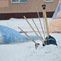 *****В городе фигуры из снега..  (кисти) :: Анатолий Михайлович