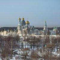 Солнечная  погода. :: Viacheslav Birukov