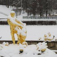 Самсон зимой.. :: ii_ik Иванов
