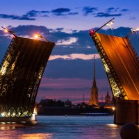 Дворцовый мост :: Наталия Л.