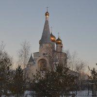 Святой лик...Свято Введенский храм... :: Георгиевич