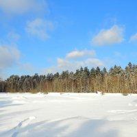 Снежная поверхность озера :: Андрей Снегерёв