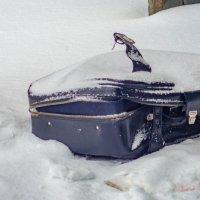 выброшенный чемодан старых времен :: Александр Леонов