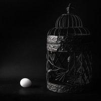 Cage :: Ирина Солощ