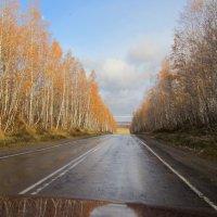 Прошел первый снег :: Влад Платов
