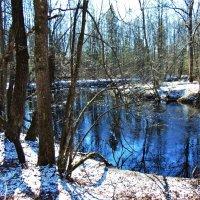 Хрустальный весенний снег посеребрил лес и берега маленькой речки :: Григорий охотник