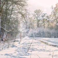 Апшеронская зима :: Геннадий Клевцов