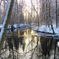 Играют в речной воде краски зимнего утра :: Григорий охотник
