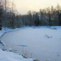 Лесной пруд надолго застыл под гнетом зимы :: Григорий охотник