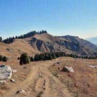 Дорога в горах :: Горный турист Иван Иванов