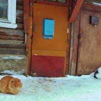 Давно писем с открытками не было . :: Святец Вячеслав