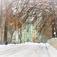 Зима в Царском Селе... :: Sergey Gordoff