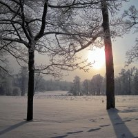 Солнце,не похожее на солнце :: dli1953