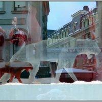 Пантера, витрина :: ZNatasha -