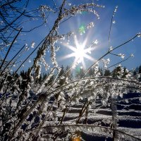 Блестя на солнце снег лежит... :: Александр Силинский
