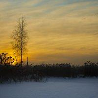 фото 2 или 1 :: Albina Lukyanchenko
