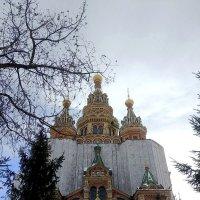 Собор Петра и Павла в Петергофе :: Самохвалова Зинаида