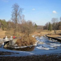 Пейзажи Павловского парка :: dli1953