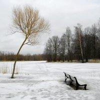 Одиночество. :: Лия ☼