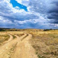 две дороги :: Дина Горбачева