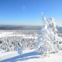 зима в горах 13 :: Константин Трапезников