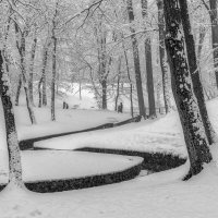 Зимний парк :: Владимир Самсонов