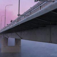 Мост через Кольский залив :: Albina Lukyanchenko