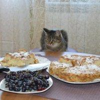 Жду... :: Андрей Хлопонин