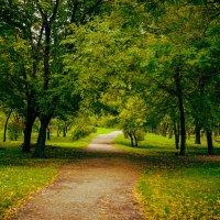 таганрогский парк :: Vlad Proshin