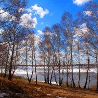 Легкая поступь весны :: владимир тимошенко