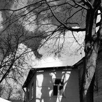 Апрельские тени :: Tanja Gerster