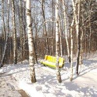 Зимы прошедшей красота... :: Анна Владимировна