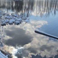 кусочек солнца в холодной воде :: Елена
