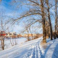 Лыжня :: Любовь Потеряхина