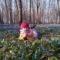 Аромат весны :: Ирина Бондарева