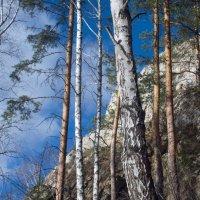 Какое небо голубое... :: Михаил Полыгалов