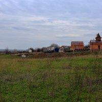 На окраине станицы :: просто Борисыч
