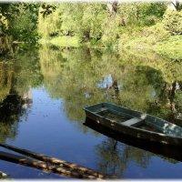 Старинный пруд :: ZNatasha -