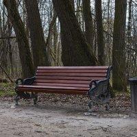 Парковая скамейка. :: Сергей Фомичев
