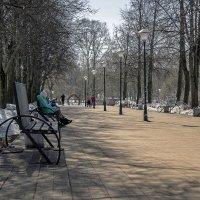Теплый весенний день :: gribushko грибушко Николай