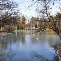 Весна в старом парке :: Dimos Izgor